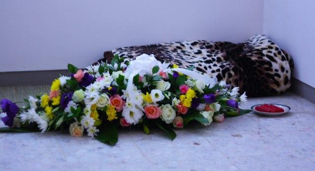 cc mourning_1805