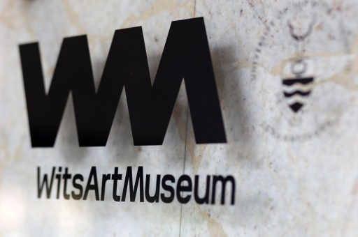 Wits Art Museum_0789 2